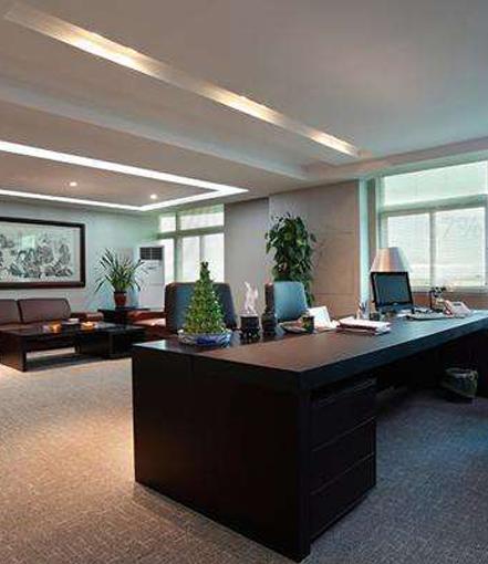总裁办公室绿植